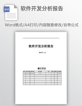 软件开发分析报告
