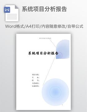 系统项目分析报告