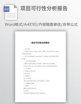 项目可行性分析报告