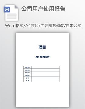 公司用户使用报告