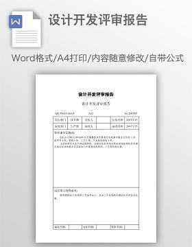 设计开发评审报告