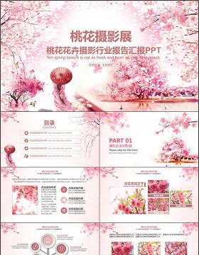 桃花花卉摄影行业报告PPT