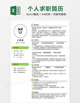 时尚IOS工程师Excel简历表格模板