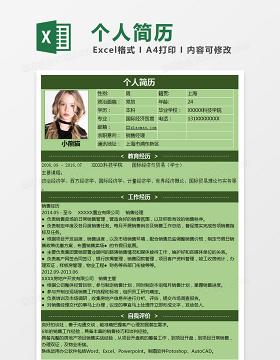 稳重风格销售经理Excel简历表格模板