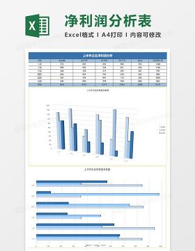 立体上半年企业净利润分析表Excel模板