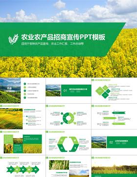 农业招商农产品宣传PPT模板