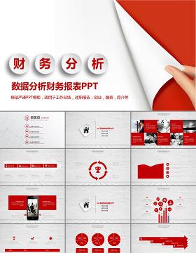 白红色财务分析案例分析PPT下载