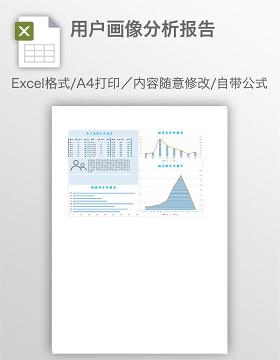 用户画像分析报告