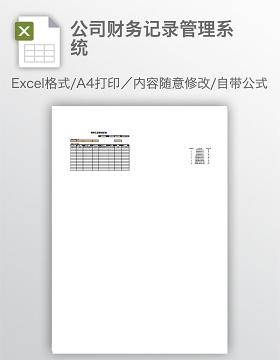 公司财务记录管理系统
