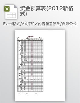 资金预算表(2012新格式)