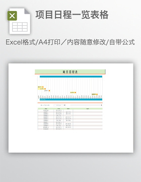 项目日程一览表格