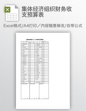 集体经济组织财务收支预算表